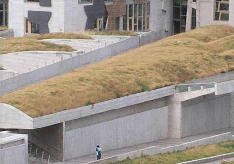 A green roof primer goat optional winter street for Green roof cost per square foot